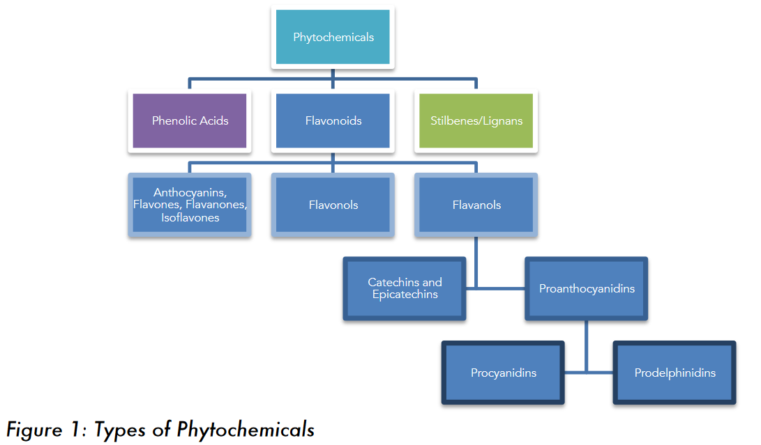 Figure 1: The different types of phytochemicals