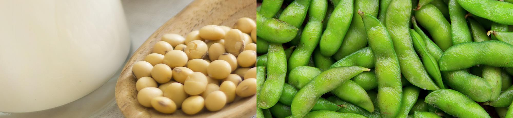 Soy milk and soy beans (edamame)
